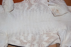 bark tan alligator hide, gator leather/skin